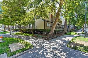 Browse active condo listings in SUTTER PLACE